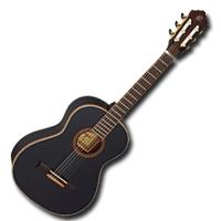 Félprofi & profi gitárok